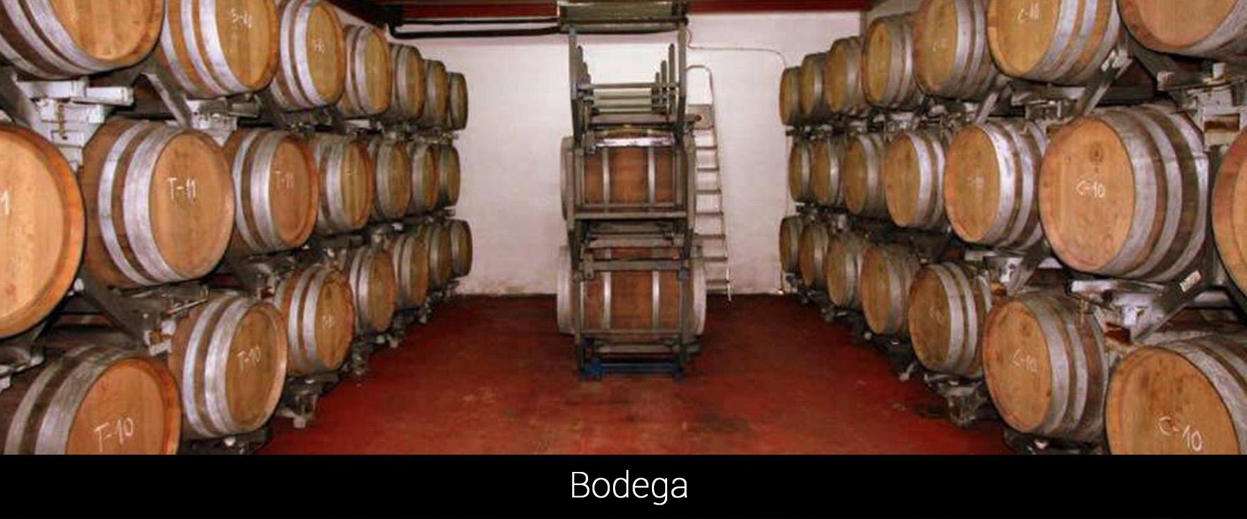 cab_bodega